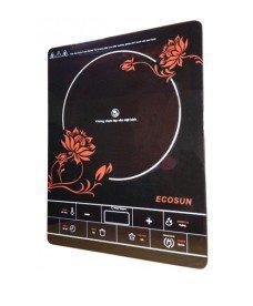 bep-hong-ngoai-ecosun-ef-20bl