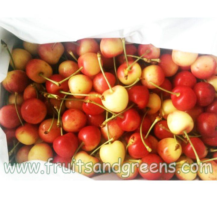 cherry-vang-my