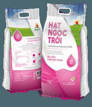 gao-hat-ngoc-troi-tien-nu-5kg